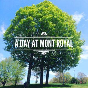 A Day at Mont Royal